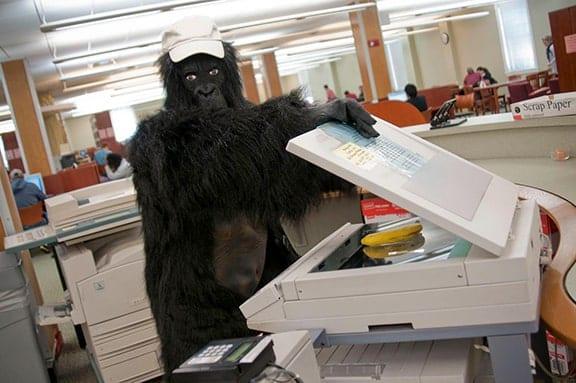 Gorilla using photocopier